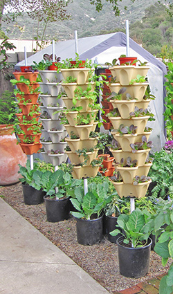 Standard Vertical Garden towers