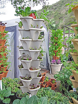Vertical Garden Pot Welcome to alegra fresh locally grown naturally enviroingenuity home garden system workwithnaturefo